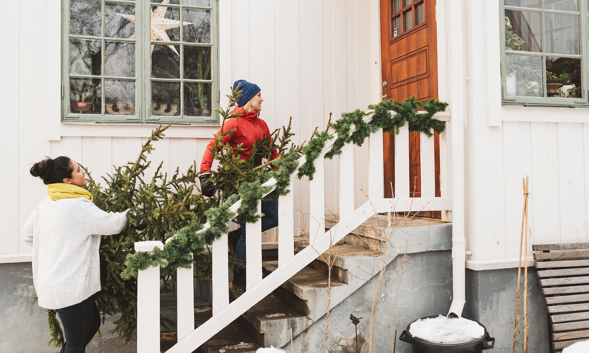 Carrying a christmas tree up the stairs.